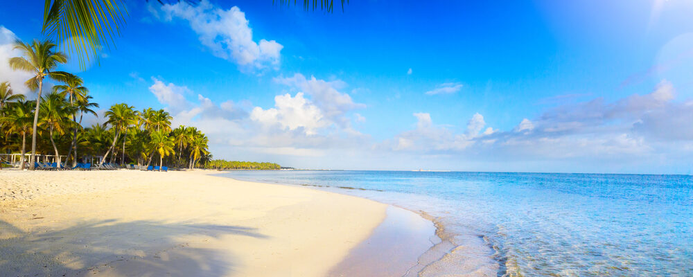 Why Should You Plan a Trip to Goa?