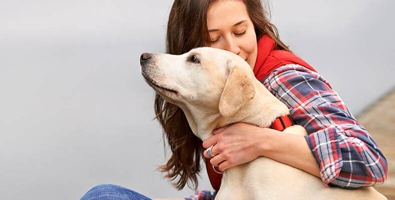 4 Signs You're Ready to Get a Dog